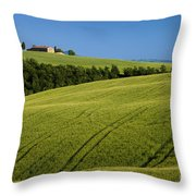 Church In The Field Throw Pillow by Brian Jannsen