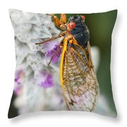 Cicada Throw Pillow