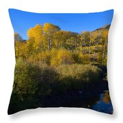 Cimarron Morning Throw Pillow