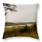 Cincinnati And The Ohio River Looking West Throw Pillow