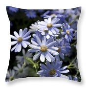 Cineraria 1225 Throw Pillow by Terri Winkler