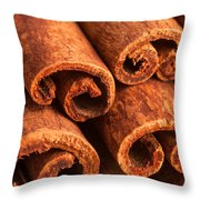 Cinnamon - Cinnamomum Throw Pillow