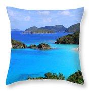 Cinnamon Bay St. John Virgin Islands Throw Pillow