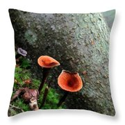 Cinnamon Polypore  Throw Pillow
