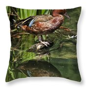 Cinnamon Teal Duck With Reflection Throw Pillow