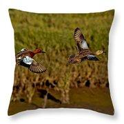 Cinnamon Teal Pair In Flight Throw Pillow