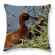 Cinnamon Teal Throw Pillow