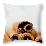 Cinnamons And Clove Throw Pillow
