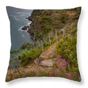 Cinque Terre Terraces In Spring Throw Pillow