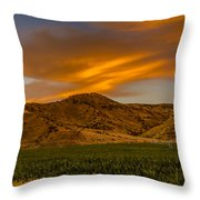 Circle Of Corn At Sunrise Throw Pillow