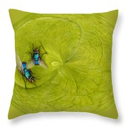 Circle Of Flies Throw Pillow