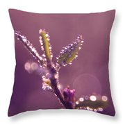 Circles From Nature - M01sqm Throw Pillow