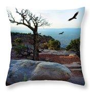 Circling Vultures Throw Pillow