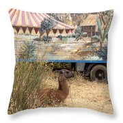 circus circus 2 - A vintage circus wagon with african paint and llama camel  Throw Pillow