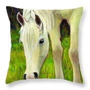 Cisco Sees Horse Art Throw Pillow