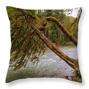 Cispus River At Iron Creek - Washington State Throw Pillow