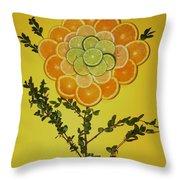 Citrus Fruit Throw Pillow