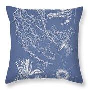 Cladosiphon Decipiens Throw Pillow