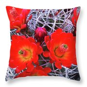 Claretcup Cactus Blooms Throw Pillow
