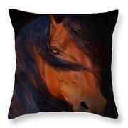 Classic Arabian Throw Pillow