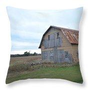 Classic Barn Throw Pillow