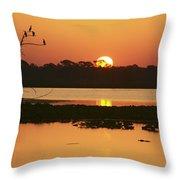 Classic Florida Sunrise Throw Pillow