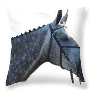 Classic Greyed Throw Pillow