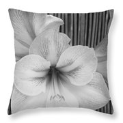 Classic Lilies Throw Pillow