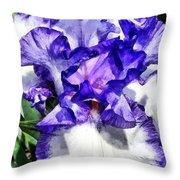 Classic Look Iris Closeup Throw Pillow