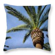 Classic Palms Throw Pillow