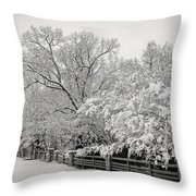 Classic Snow Throw Pillow by Carol Whaley Addassi