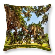 Classic Southern Beauty 2 Throw Pillow