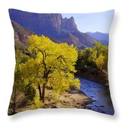 Classic Zion Throw Pillow