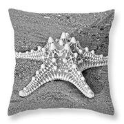 Classy Asteroidea Throw Pillow