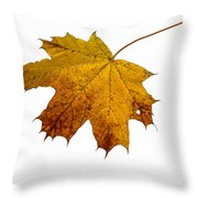 Claws Of The Autumn - Featured 3 Throw Pillow