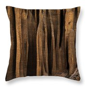 Clay Organ Pipes Formation In Front Throw Pillow