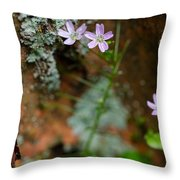 Claytonia And Rust Throw Pillow