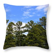 Clean Air Throw Pillow