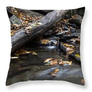Clean Clear And Natural Throw Pillow by Andrew Pacheco