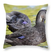 Ducks On Green Throw Pillow