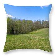 Clean Green Throw Pillow