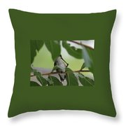 Cleaning Time Throw Pillow