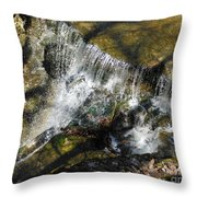 Clear Beautiful Water Series 3 Throw Pillow