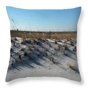 Clear Day At The Beach Throw Pillow