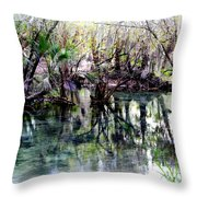 Clear Florida Springs Throw Pillow