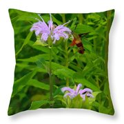 Clear-winged Hummingbird Moth Throw Pillow