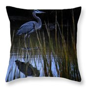 Cleared For Takeoff 2 Throw Pillow