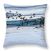 Cleared To Land Throw Pillow