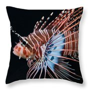 Clearfin Lionfish Throw Pillow