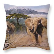 Clearing The Way Throw Pillow